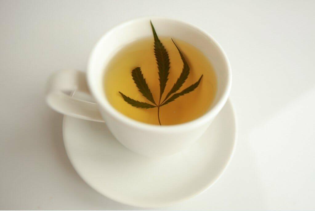 hemp leaf tea
