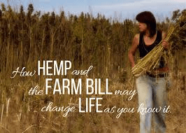 How Hemp Can Revive The Manufacturing Industry Of the US And Decrease Its Dependency On China 6