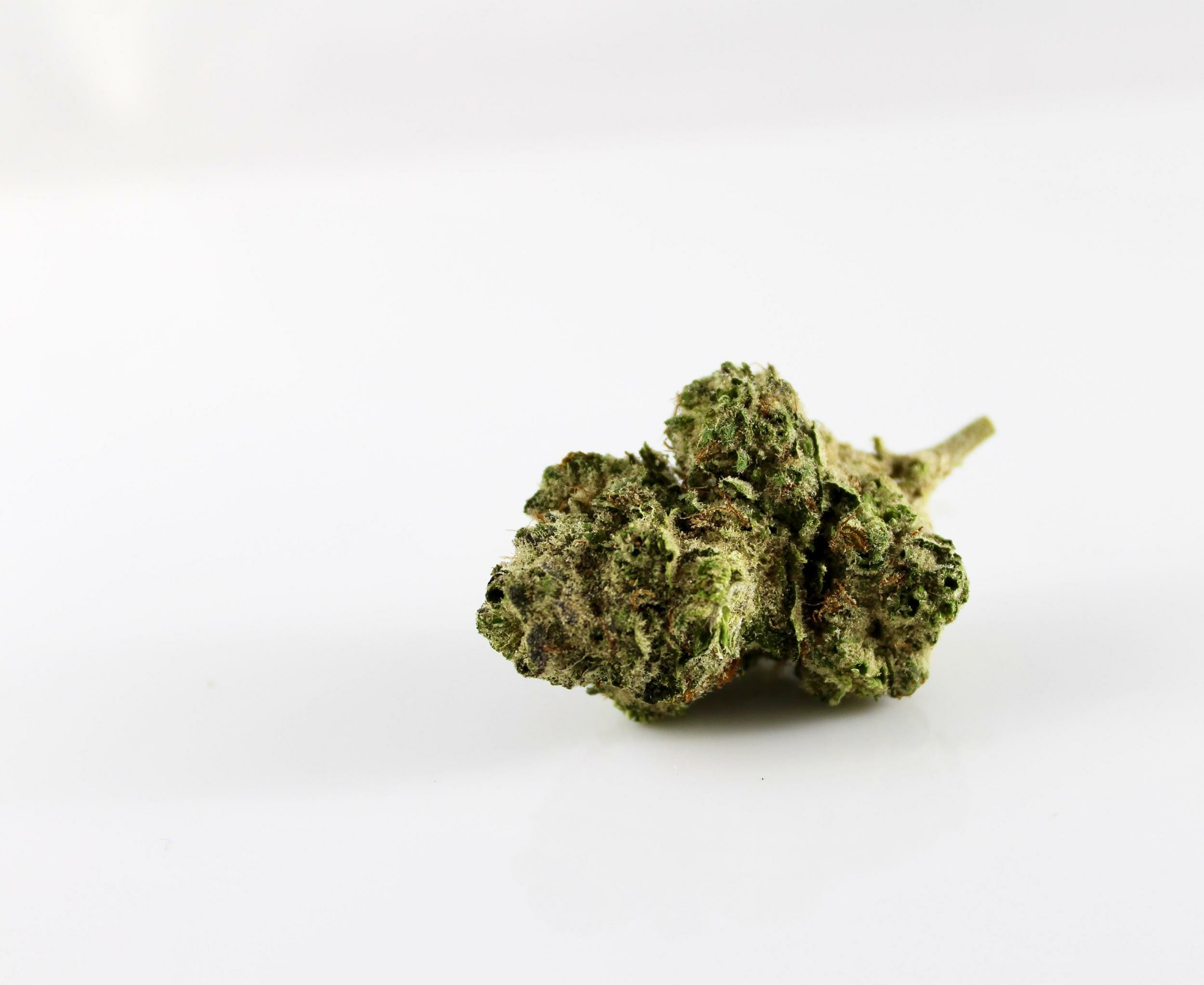 What Are The Real Benefits of Microdosing With Cannabis 2